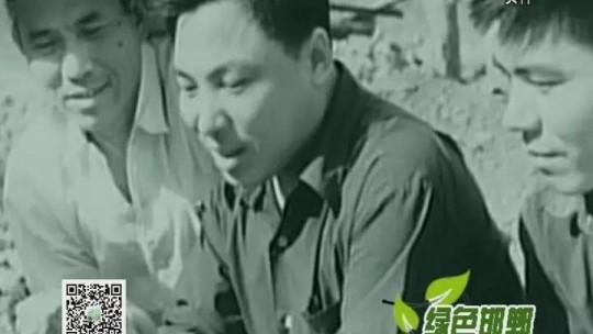 武安磁山二街:以改革创新引领乡村振兴